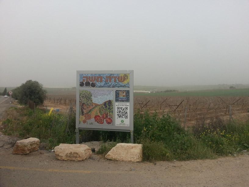 שדה-משה